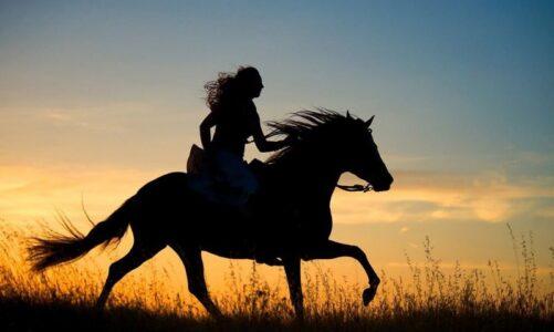 Quanto costa andare a Cavallo?